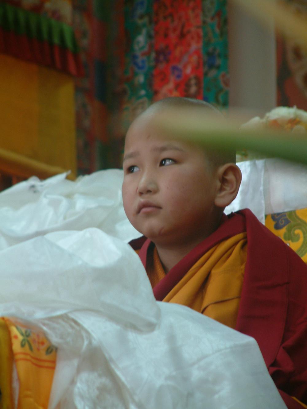 上師恩重如山   藏傳佛教依法不依人