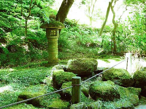 鎌倉・報国寺◆境内散歩◆