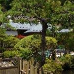 鎌倉・光触寺◆境内散歩◆