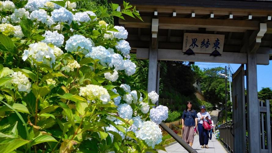 鎌倉・成就院◆境内散歩◆