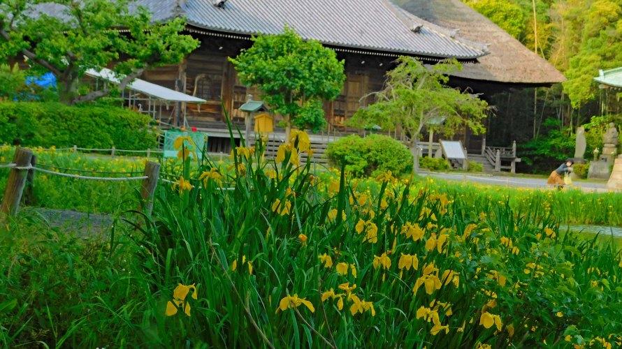 金沢八景・称名寺◆境内散歩(その3)◆金堂・釈迦堂・鐘楼・北条実時墓所・八角堂等