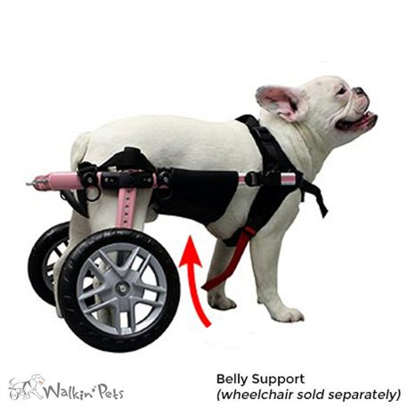 wheel chairs for dogs solid wood dog wheelchair and cart comparisons choosing a belly support provides additional your pet while in the walkin wheels raises middle of s body to relieve