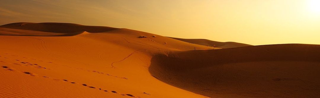 (Ezer)egy éjszaka a sivatagban