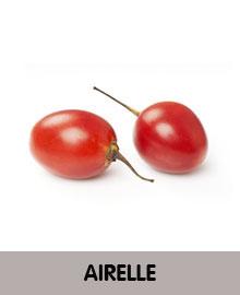 AIRELLE-2