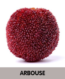 ARBOUSE-2