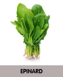EPINARD.jpg