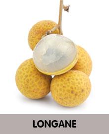 LONGANE-2.jpg
