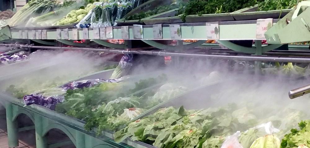 Légume salade 1200