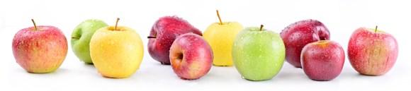 différentes variétés de pommes, fruit préféré des français