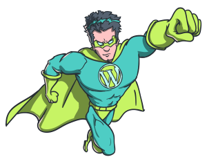 The WordPress Hero