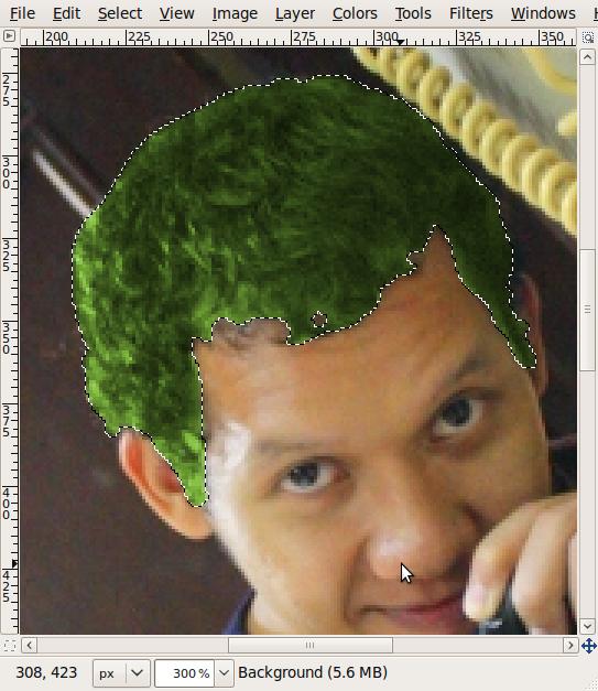Screenshot-*omade.JPG-1.0 (RGB, 1 layer) 533x800 – GIMP-6