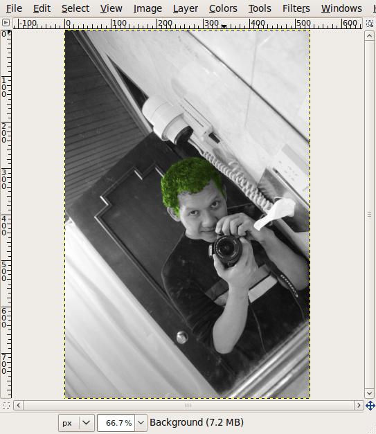 Screenshot-omadehijau.JPG-1.0 (RGB, 1 layer) 533x800 – GIMP
