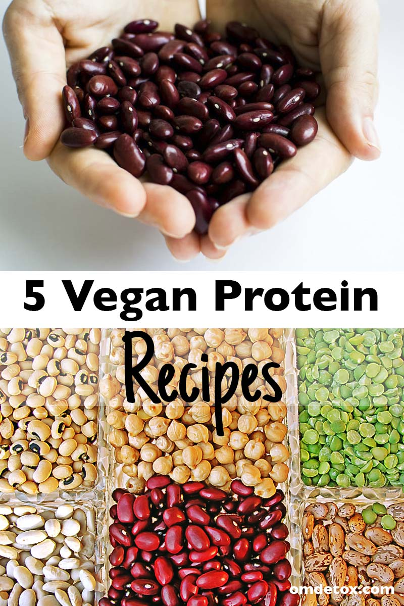 5 Vegan Protein Recipes