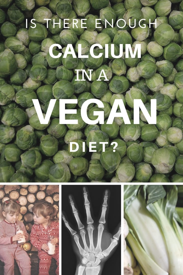 Do Vegans Get Enough Calcium? [is milk really the best ...