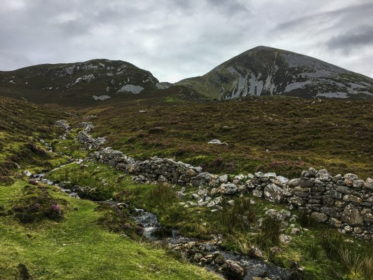 Stone wall in Ireland with heather at holy mountain