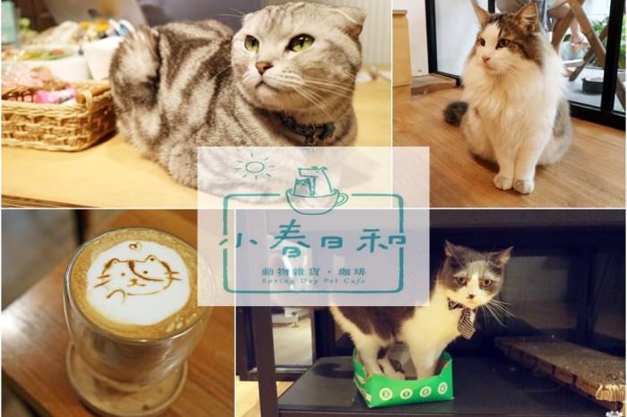 《台北貓咪咖啡》小春日和 動物雜貨 ・ 珈琲 民生社區寵物與親子友善餐廳