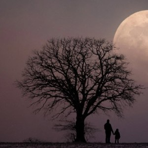 Gazing at the moon