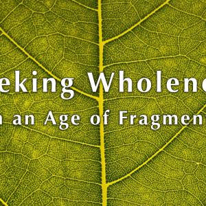 Wholeness Webinar with Ilia Delio