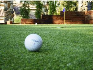 Omegaturf golf ball