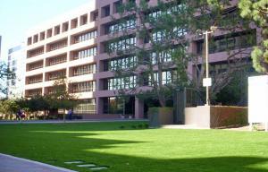 OmegaTurf commercial building landscape