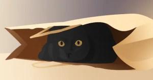 gato-no-saco