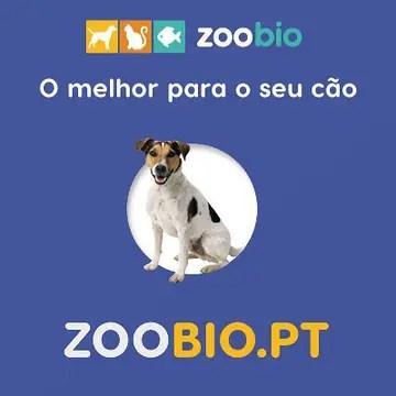 zoobio.pt