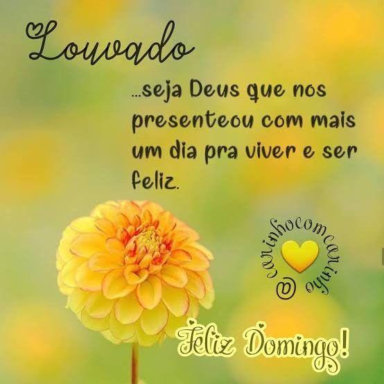 Feliz Domingo louvado Deus