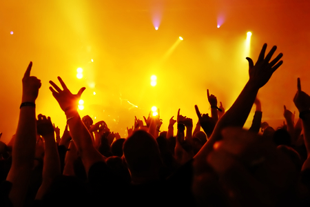 29458559 - silhouettes of concert crowd in front of bright stage lights