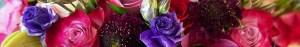 Flower Shop in Lantana
