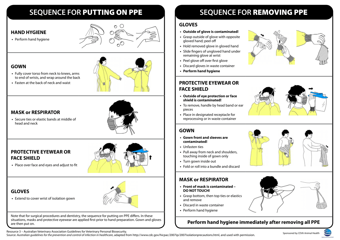 What Actually Is PPE And How It Is Helping To Fight Against Coronavirus