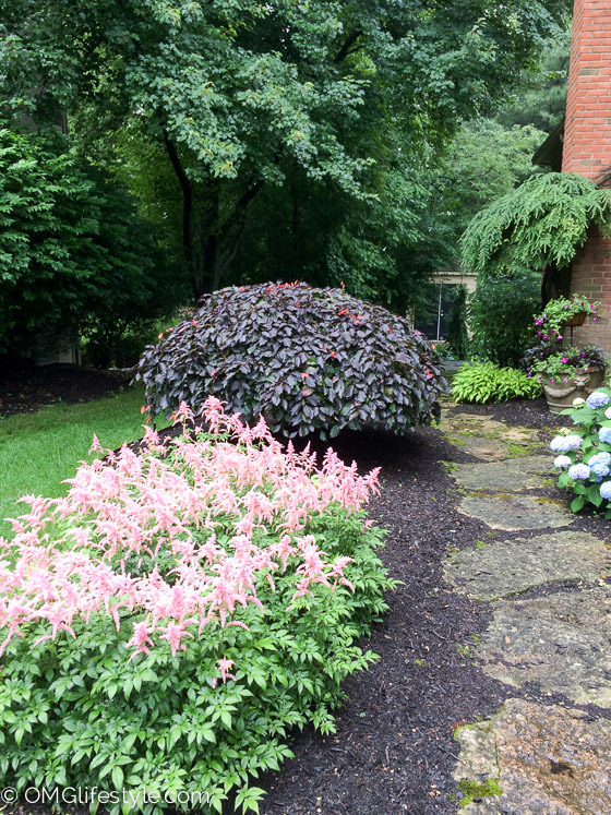 inviting side yard landscaping