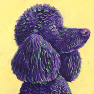 Poodle Acrylic painting