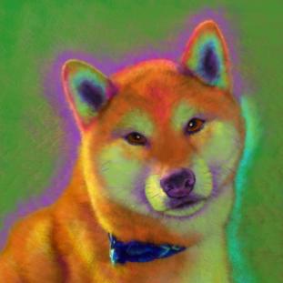 Shiba Inu Custom Painting
