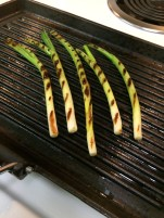OMGs DFW Food - Grilled Skewers and Peppers 2