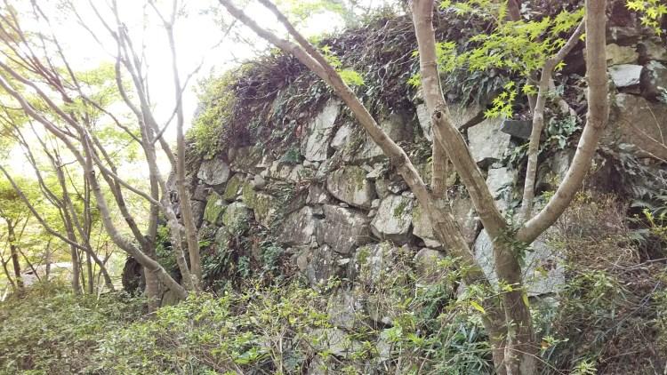 八幡山山頂