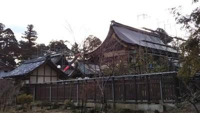 沙沙貴神社_台風被害の修理