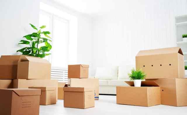 selitveni-servis-skatle-za-selitev-in-skladiscenje-cenik