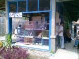 Foto-foto sudut, lorong dan hewan peliharaan yang dijajakan di Pasty Jogja (31)