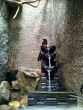 Kandang penangkaran murai batu yang asri di halaman rumah Om Gun (2)