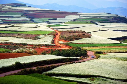 Tanah merah di Kunming membentuk mosaik indah ketika dikombinasi dengan tanaman aneka warna (5)