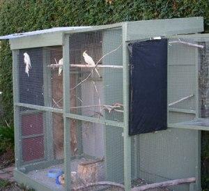 Ide kreatif kandang aviary indoor dan outdoor  OM KICAU