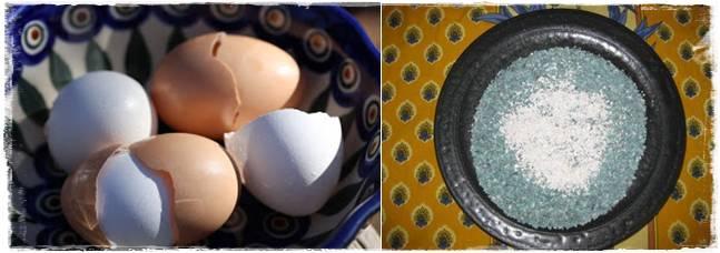 kulit telur