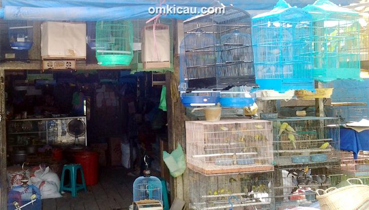 Dalam serbuan itu, polis merampas pelbagai barangan seperti enam telefon bimbit, empat sangkar burung bersama dua burung murai batu, tiong emas dan bayan; Info harga burung di Samarinda Juli 2014: Serindit Rp 50 ...