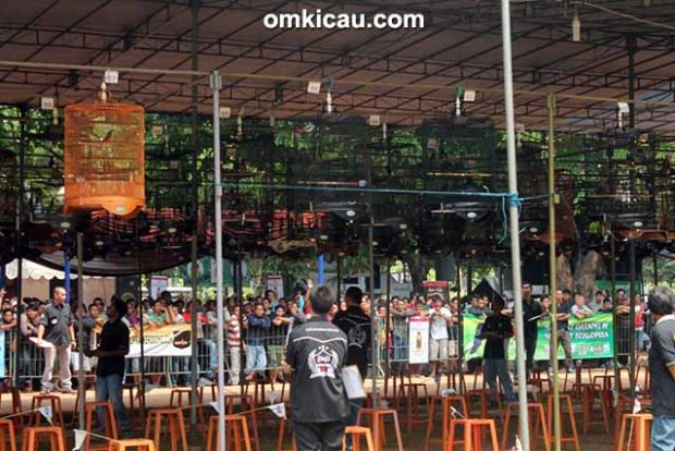 Lomba burung berkicau Kemayoran 212 Cup Jakarta