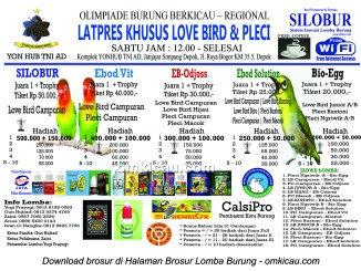 Brosur Latpres Silobur Khusus Lovebird dan Pleci, Depok, setiap Sabtu jam 12