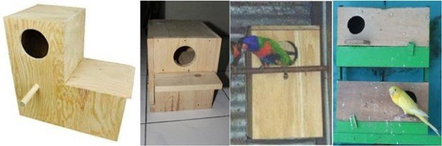 Tempat sarang untuk burung jenis paruh bengkok