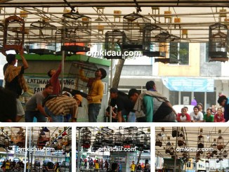 Latpres Gong Xi Fa Cai RE Muci Tangerang