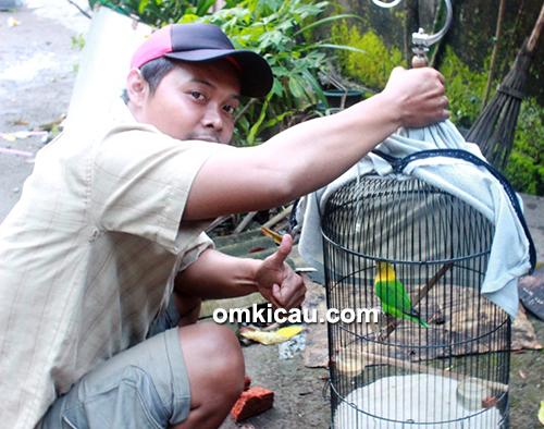 Om Andi dan lovebird Samara