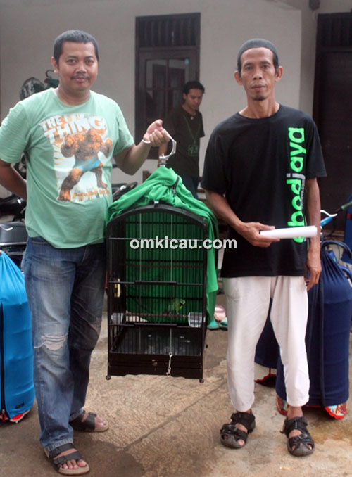 Om Kosasi dan cucak hijau Rolex