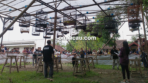 Kamis Vaganza Temuireng BC Pemalang
